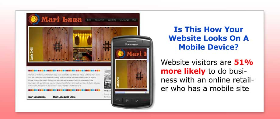 Advantages of A Mobile Website